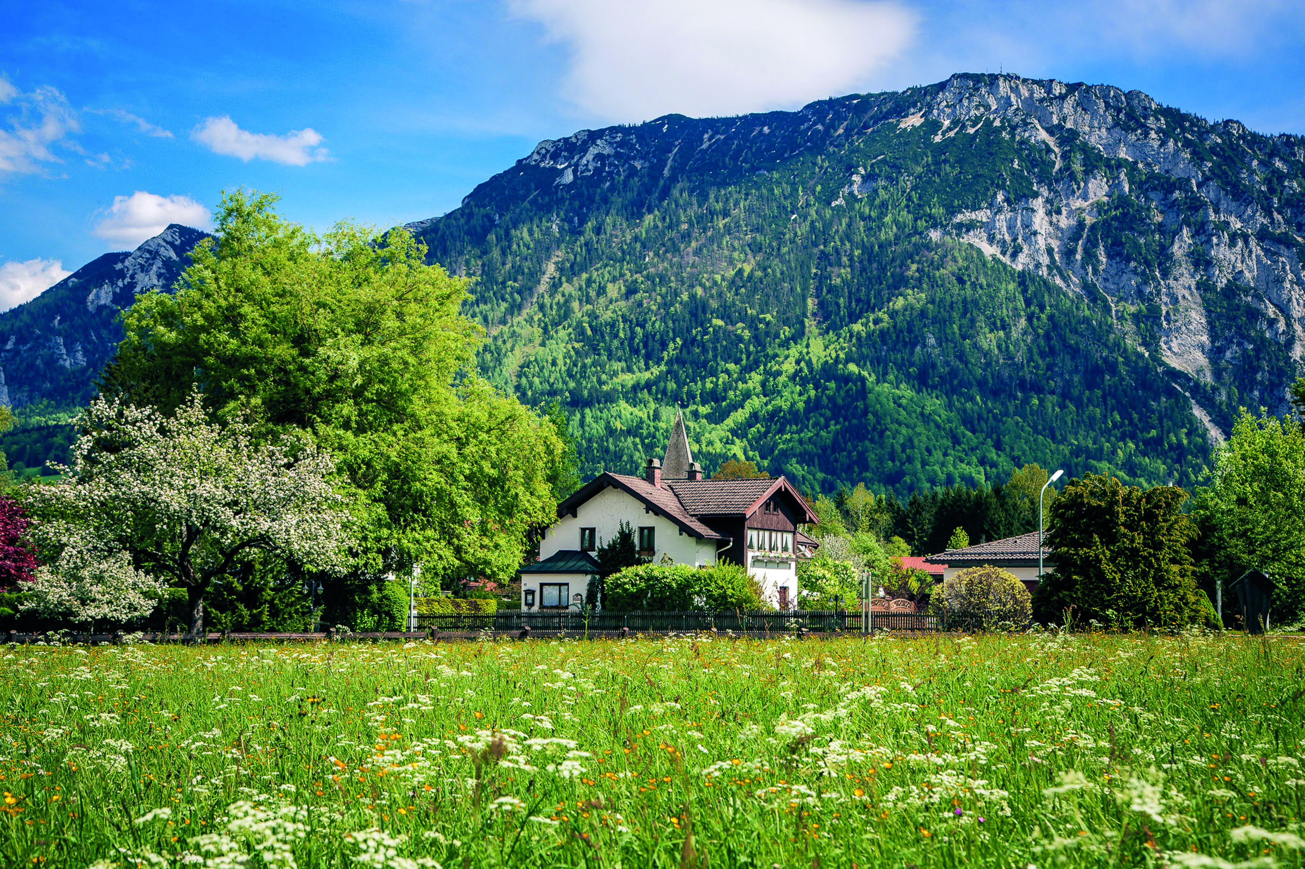 Ferienhaus-mit Rauschberg-352